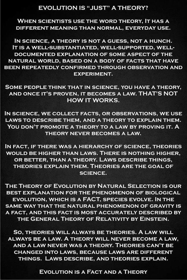 is evolution just a theory
