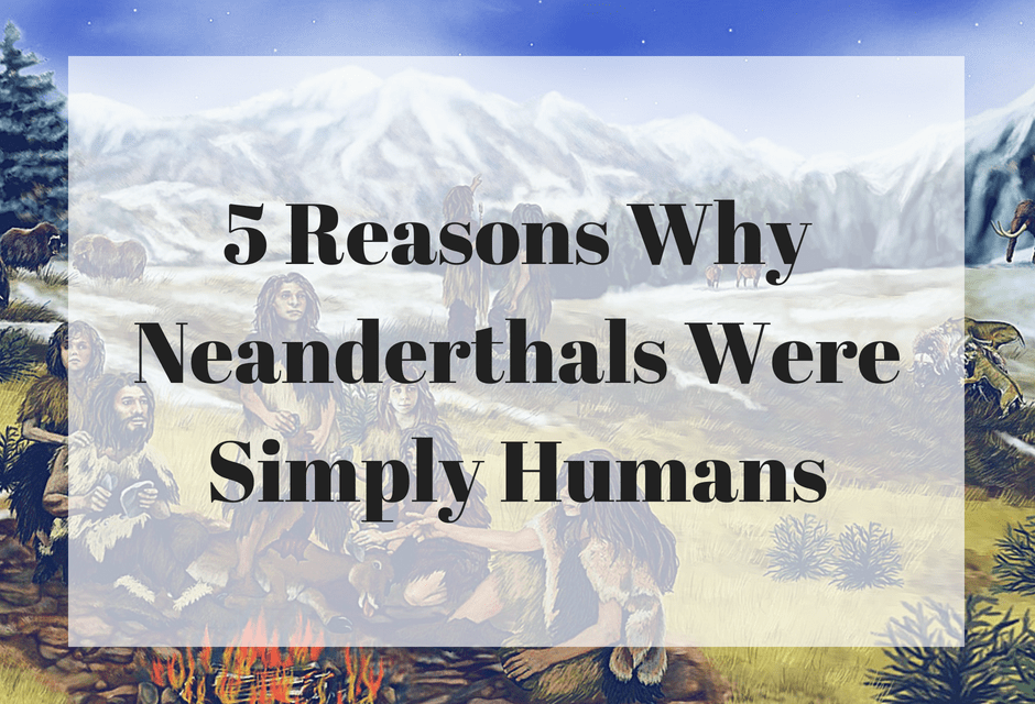 5 Reasons Why Neanderthals Were Simply Humans