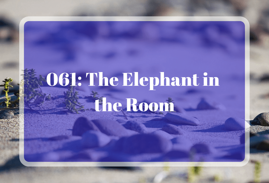 061: The Elephant in the Room