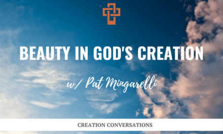 Beauty in God's Creation w/ Pat Mingarelli